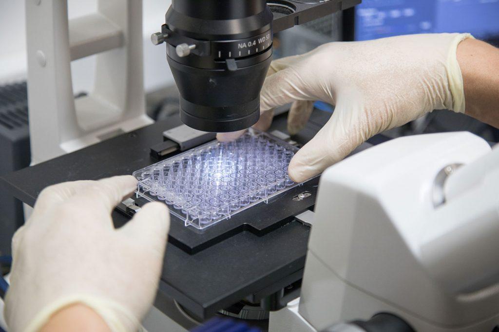 田辺三菱製薬とDNDi の新たな共同プロジェクトにGHIT Fundが助成